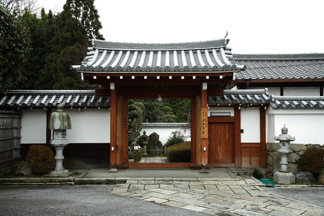 東福寺 霊雲院 その2