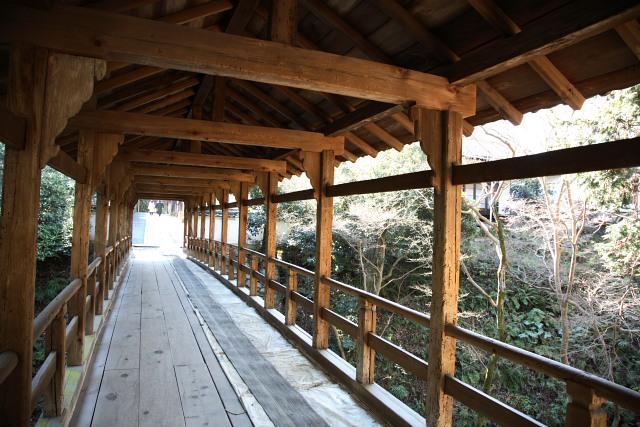 東福寺 その3