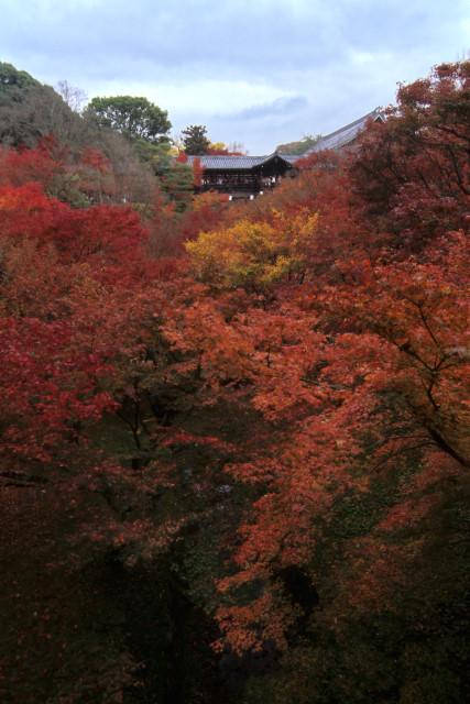 東福寺 その6